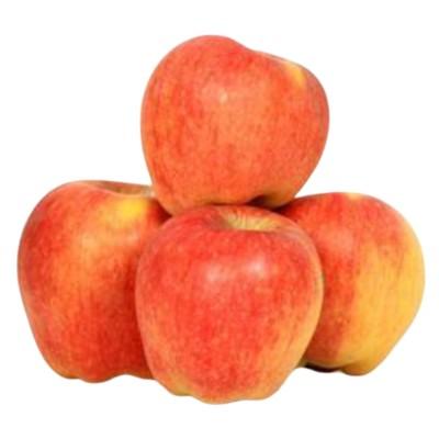 Ябълки Пинова