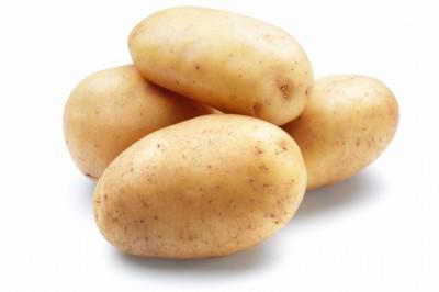 Картоф едър вносен