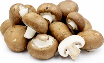 Гъби Кралски печурки