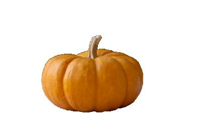 Тиква Хелоуин