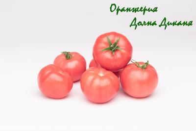 Първокласен розов домат от Оранжерия Долна Диканя