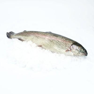Риба Пъстърва чистена