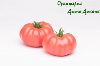 Екстра качество Розов домат от Оранжерия Долна Диканя
