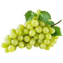 Бяло грозде Султанина без семки